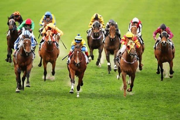 Shock NSW Racing Decision Raises Questions Over Stewards' Penalties under ARR175